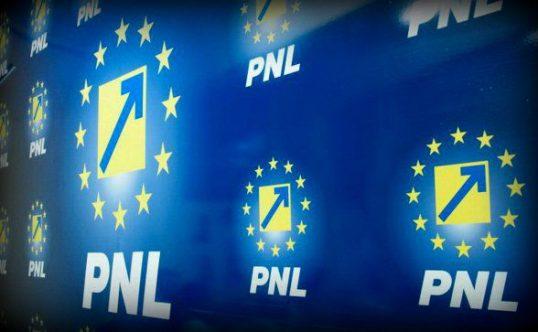 Foto: Liberalii vor alegeri anticipate în aprilie