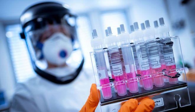 16 cetățeni români au fost depistați pozitiv cu coronavirus la o fermă din Spania - 1-1597765322.jpg