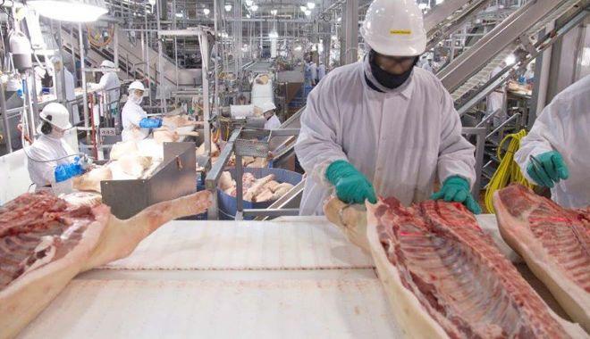 Importurile de carne de porc din Germania, suspendate pe piaţa asiatică - 1-1600099727.jpg