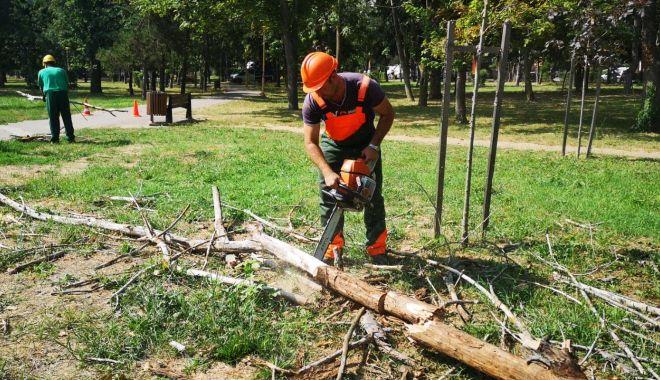 Spațiile verzi din municipiul Constanța sunt îngrijite zilnic - 11-1628166437.jpg