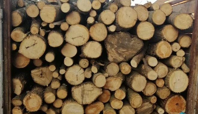 Foto: Transport de lemne confiscat de jandarmii din Cernavodă