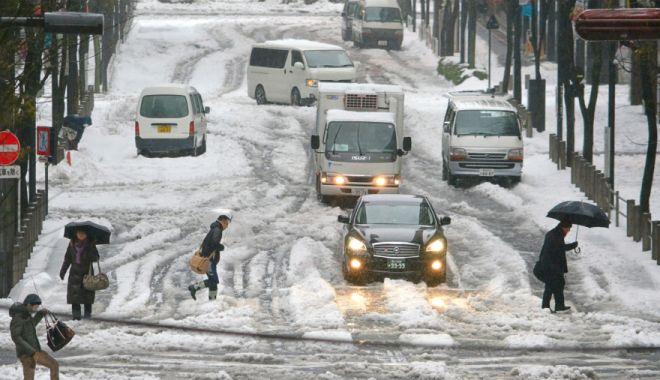 Foto: Furtună de zăpadă! Traficul aerian și terestru, puternic perturbat