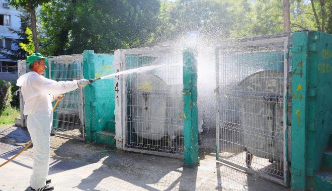 Foto: Acțiuni de dezinfecție a platformelor de deșeuri, în municipiul Constanța