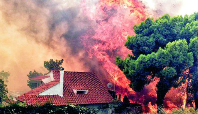 Foto: A fost stabilită cauza incendiilor din Grecia