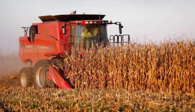 Foto: Agricultorii, în alertă! Ce culturi vor fi afectate de seceta extremă