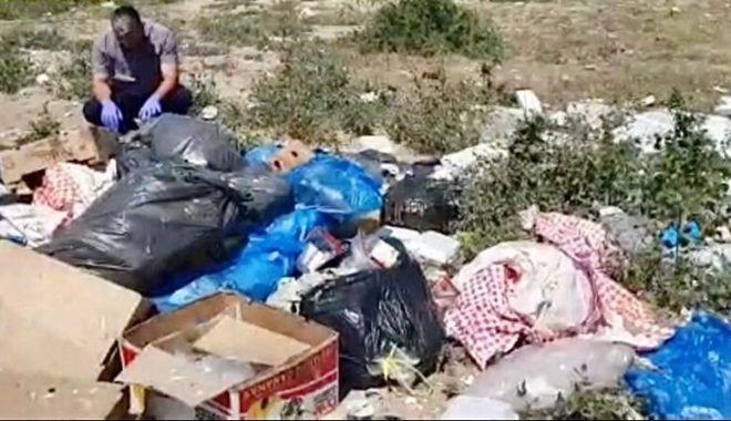 Foto: Amendă uriașă pentru aruncarea gunoiului pe malul lacului Siutghiol