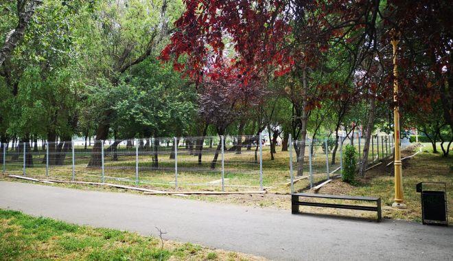 Foto: Țarc pentru câini, în parcul Tăbăcărie