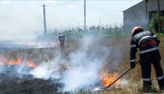 Amenzi usturătoare pentru arderile de miriști - ardereamiristilorsursagardademed-1589991158.jpg