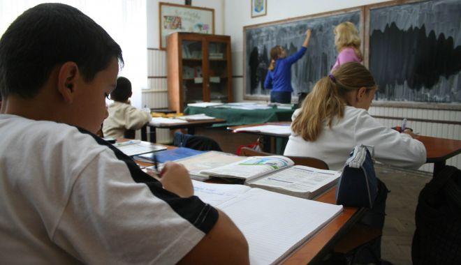 Asociaţia Elevilor a câştigat procesele cu primăriile Lipniţa şi Topalu. Elevii vor primi burse - asociatiaelevilor-1602158741.jpg