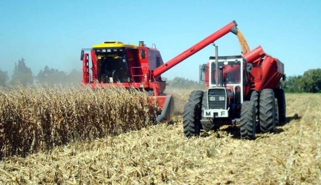Foto: Ați depus declarația privind veniturile din activități agricole?
