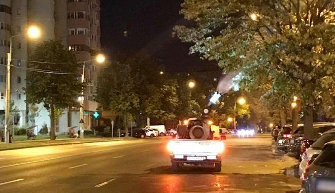 Foto: Au fost intensificate acțiunile de dezinsecție în toate cartierele orașului