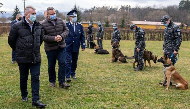 Câinii polițiști, antrenați să miroasă COVID-19! - cainiantrenati3-1613154700.jpg