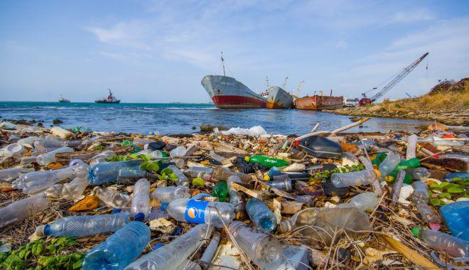 Foto: Campanie internațională pentru curățarea plajelor și țărmurilor
