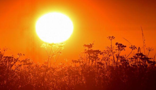 Cod galben de caniculă în Constanța și 22 de județe. Vor fi până la 37 de grade Celsius - canicula-1593756694.jpg