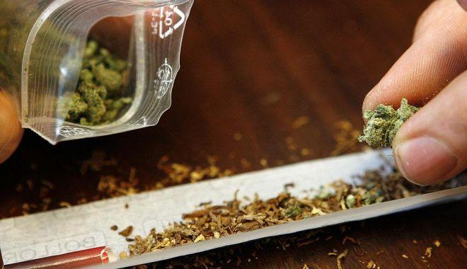 Constănțean arestat pentru trafic cu cannabis - cannabis-1575831055.jpg