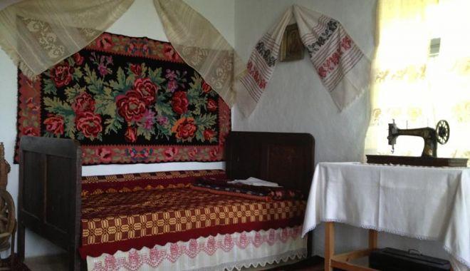 Excursie într-un loc mirific. Casa de poveste de la Oltina își așteaptă vizitatorii - casadepoveste3-1561158652.jpg
