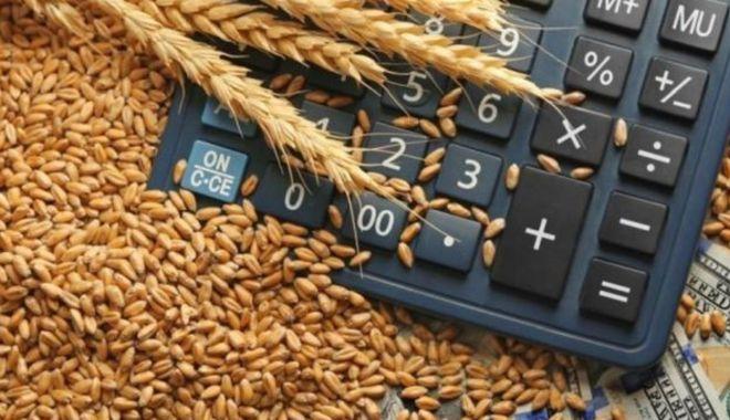 Primul exportator mondial de grâu își va suspenda exporturile până la 1 iulie - cerealegrau1280x720-1587915292.jpg
