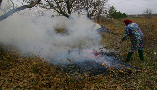 Constănţenii care vor da foc la frunze vor fi sancţionaţi - constanteniicarevordafoclafrunze-1611574422.jpg