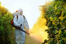 Foto: Consumul de pesticide din agricultura românească
