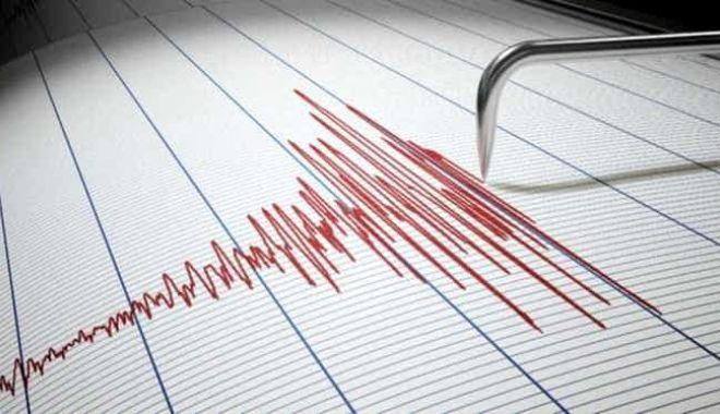 Cutremur, vineri dimineaţă în zona Vrancea - cutremur-1611300762.jpg