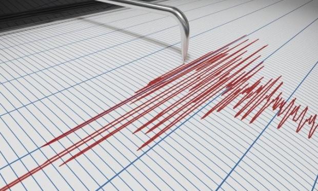 A FOST CUTREMUR! Ce magnitudine au înregistrat aparatele - cutremur00700400-1573282191.jpg