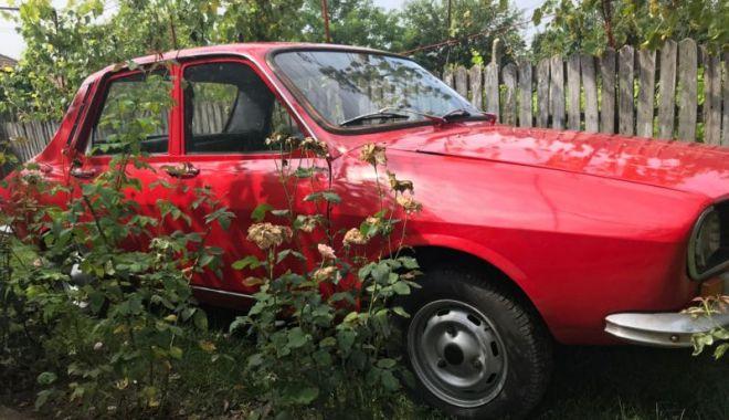 Foto: Roșia de Drăgășani! Nu arată deloc rău, dar prețul…