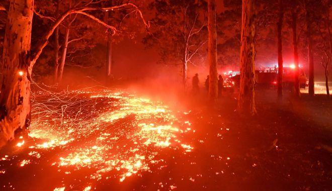 Foto: Iohannis decretează: România ajută Australia în lupta cu incendiile