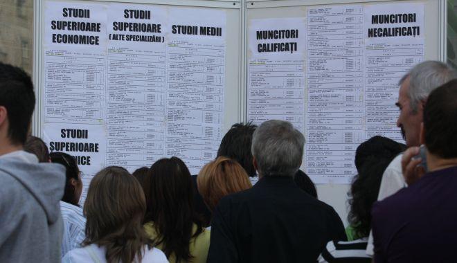Mii de locuri de muncă vacante pentru șomeri. Iată ce se caută! - ddd-1579010804.jpg