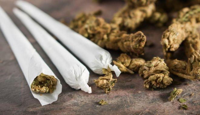 Foto: Legea privind traficul și consumul de droguri, trimisă la reexaminare