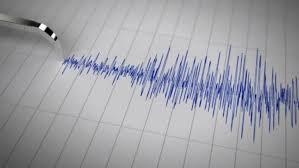 Cutremur de magnitudine 3,2, în această dimineață - ddd-1586587086.jpg