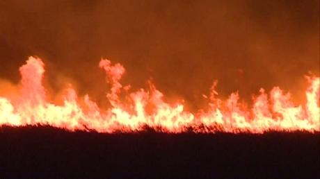 Foto: Incendiul de la Vadu, provocat de o țigară aruncată la întâmplare