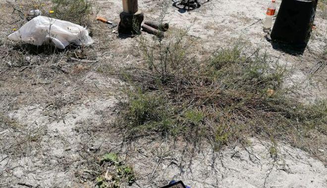 Dezastrul de pe plajele sălbatice de la Vadu și Corbu.