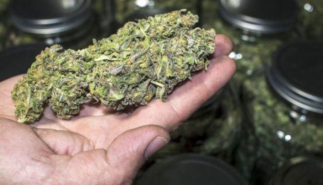 Doi bărbaţi, prinşi în flagrant delict, cu cannabis - doibarbati-1601478490.jpg