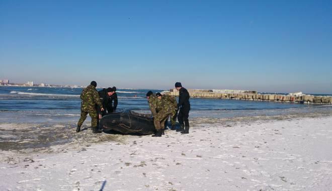 Foto: Update. Alertă la CONSTANȚA / Polițiștii caută un student care a amenințat că se aruncă în mare. Ce mesaj i-a lăsat tatălui său