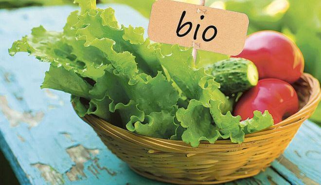 Foto: Ecologizarea agriculturii va fi însoțită de riscuri pentru Europa