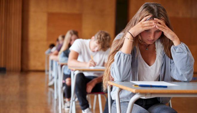 Cu sabia deasupra capului. Cum vor elevii să scape de Bacalaureat - eleviivorsascapesursaalbawaba-1585486596.jpg