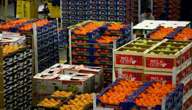 Fermierii continuă lupta cu marii retaileri - fermieriicontinualupta-1631641926.jpg