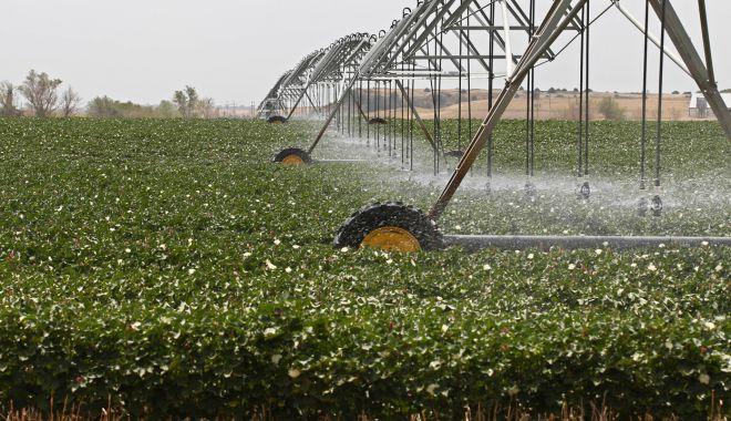Foto: Fermierii își amintesc de irigații doar când îi lovește seceta