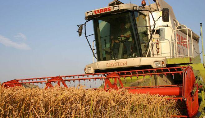 Fermierii plâng cu vorbe! Recoltele s-au înjumătățit, prețurile sunt mici, creditorii bat la ușă - fermieriiplangcuvorbelaseceris-1561675772.jpg