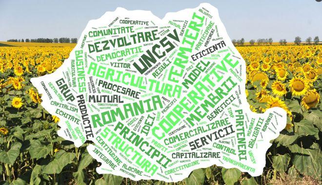 Fermierii români, în schimb de experiență în Franța - fermieriiromaniinschimbdeexperie-1557511938.jpg