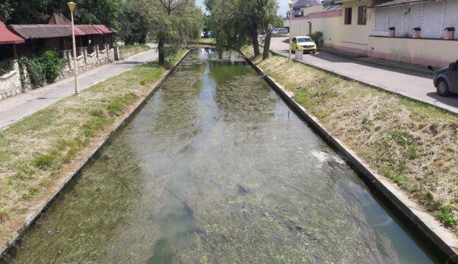 Satul de Vacanţă, uitat de autorităţi. Canalul care leagă cele două lacuri, focar de infecţie - fond-1623171681.jpg