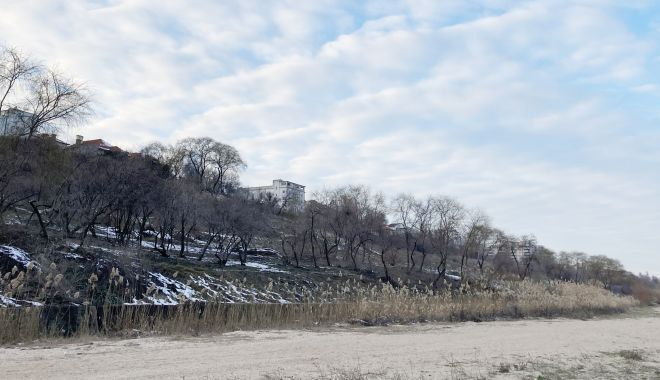 """Detalii noi în cazul """"defrişării"""" falezei de la plaja """"Modern"""". Pro şi contra construirii pe taluz - fond2-1614626090.jpg"""