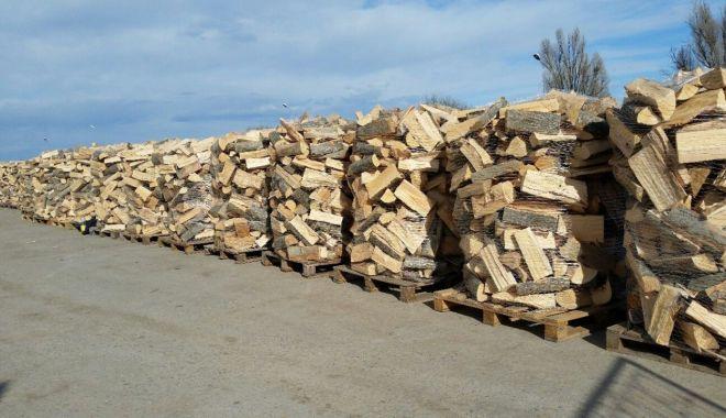 Preţul lemnelor de foc a explodat! Un metru cub a ajuns de neatins - fond2-1631035520.jpg