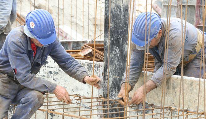 Foto: Semnal de alarmă: va înflori traficul de carne vie în lunile următoare!