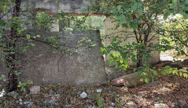 Ce viitor mai au bazinele de înot de pe vremea comunismului, din Constanța? - fondbazin2-1631299300.jpg