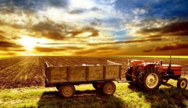 Ministerul Agriculturii a primit bani mai mulţi. Dar insuficienţi! - fondbugetulagriculturii-1613154297.jpg