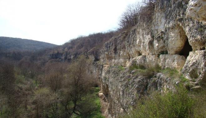 Frumusețile ascunse ale Dobrogei: păduri  și peșteri pline de legende și plaje neștiute - fotofondcanarauafetii-1496247120.jpg