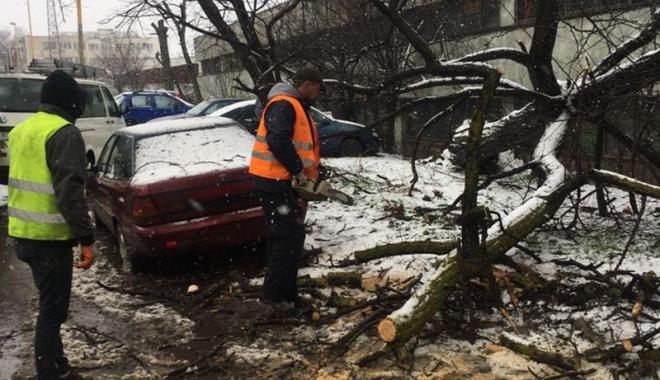Foto: Județul Constanța, măturat de viscol. Zeci de localități rămase în beznă și fără apă
