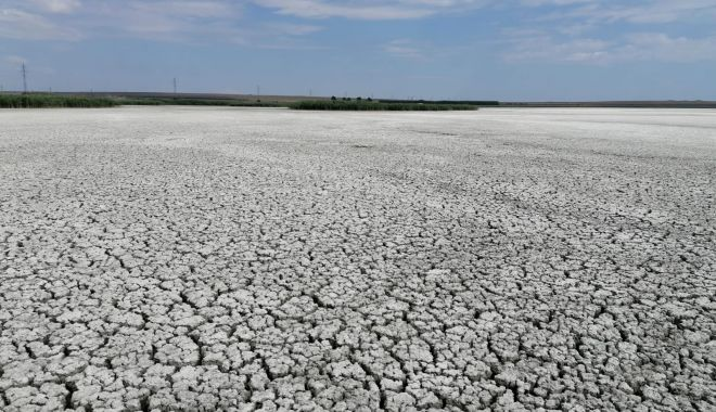 Dezastru în Dobrogea. Lacul sărat Nuntași, secat complet - fotofonddezastruindobrogealaculn-1597247407.jpg