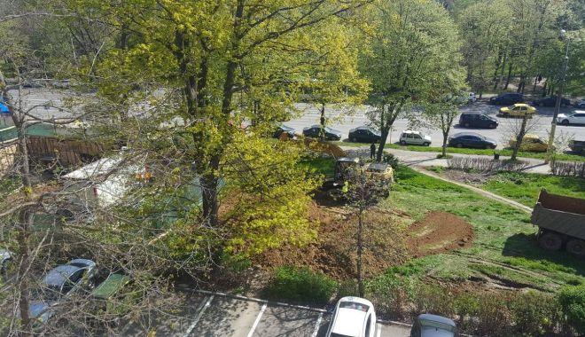 Primăria a dat, instanța a luat! O rază de speranță pentru spațiile verzi din Constanța - fotofondorazadesperanta4-1559501750.jpg
